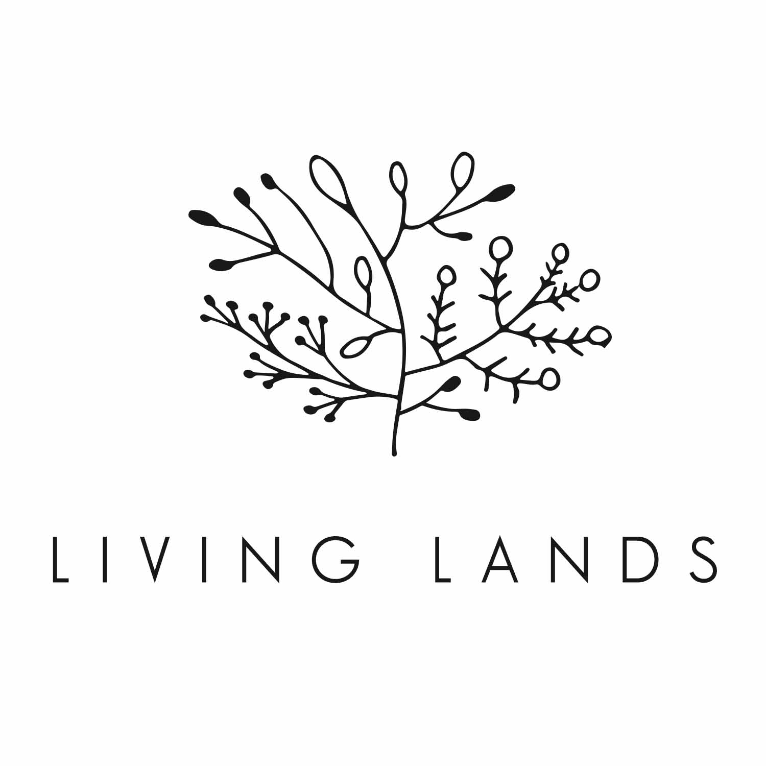 Living Lands Landscape and Design